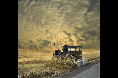fine art photography, Amish Milk Cart