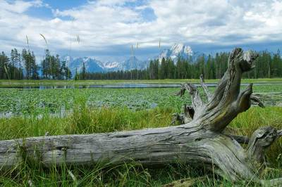 fine art photography, Grand Tetons, Colter Bay, mountains. landscape, travel photography
